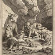 La fontaine la cour du lion